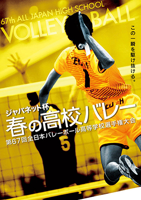 2015_works_d-volley01
